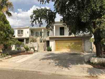 Laredo Single Family Home For Sale: 317 W Maple Lp