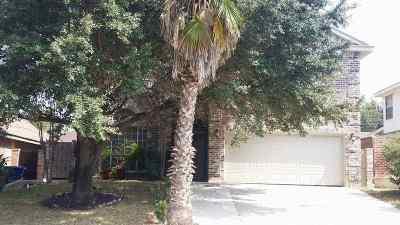 Laredo Single Family Home For Sale: 8917 Cornell Dr