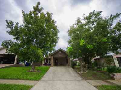 Single Family Home For Sale: 1427 Agave Dr