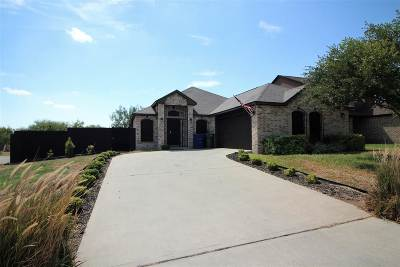 Laredo Single Family Home For Sale: 2948 Burnet Drive
