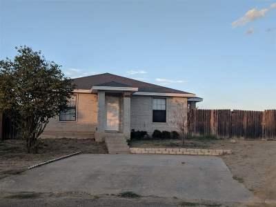 Laredo Rental For Rent: 3920 Sand Creek Ct