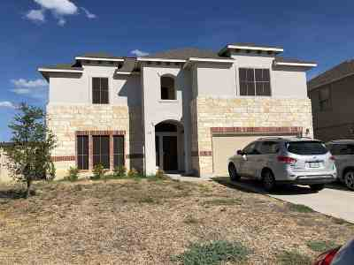 Laredo Single Family Home For Sale: 123 Majestic Palm Dr.