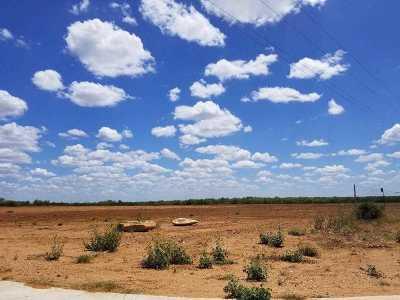 Laredo Rental For Rent: Lot 1 Blk 1 High Caliber Estates Dr.