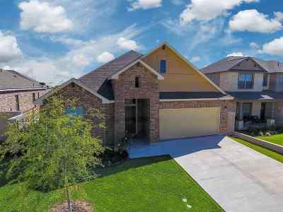 Laredo Single Family Home For Sale: 113 Despejado Dr