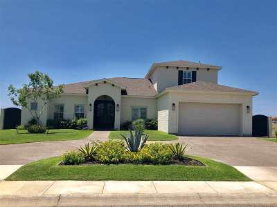 Laredo Single Family Home For Sale: 334 Della Falls Dr