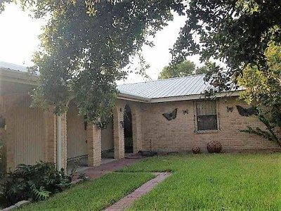 Zapata County Single Family Home For Sale: 2373 County Rd