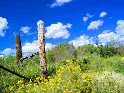 Laredo Residential Lots & Land For Sale: Mangana-Hein Rd
