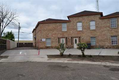 Laredo Multi Family Home For Sale: 312 Begona Ct
