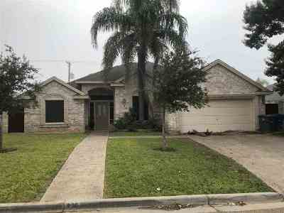 Laredo Single Family Home For Sale: 9103 Misty Wood Ave