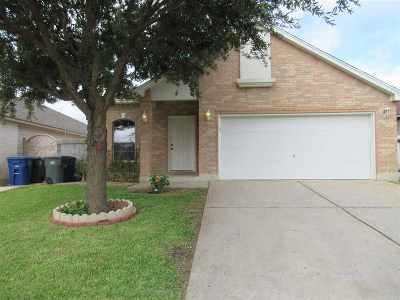 Laredo Single Family Home Option-Show: 11170 Carrizo Dr