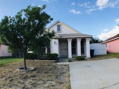 Laredo Single Family Home For Sale: 6010 Fray Augusto Ln