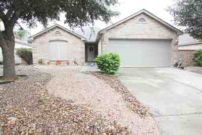 Laredo Single Family Home For Sale: 2033 Buenos Aires Dr