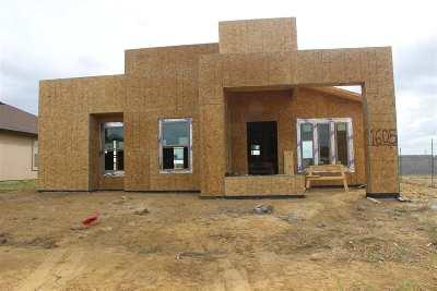 Laredo TX Single Family Home For Sale: $142,900