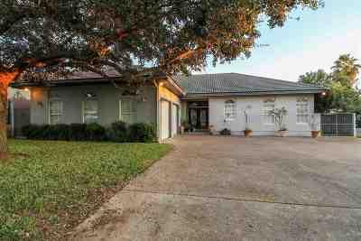 Laredo Single Family Home For Sale: 217 Vintage Ln