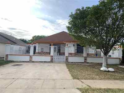 Laredo Single Family Home For Sale: 3410 Eucalyptus Ave