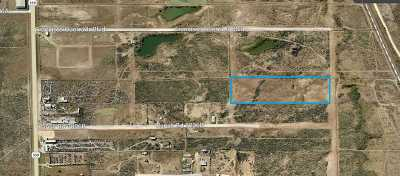 Laredo Residential Lots & Land For Sale: 359 Tx State Hwy 359