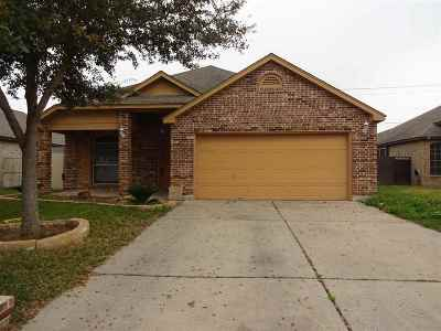 Single Family Home For Sale: 3017 Silhouette Dr