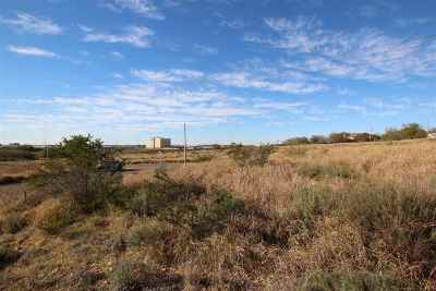 Residential Lots & Land For Sale: 8715 High Creek Dr