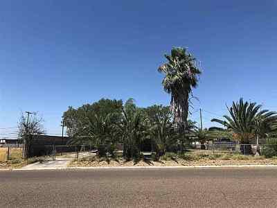 Zapata County Single Family Home For Sale: 409 Glenn St