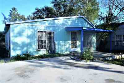 Laredo Single Family Home For Sale: 2711 S Louisiana Ave