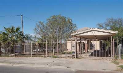 Laredo Single Family Home For Sale: 2702 Chestnut St
