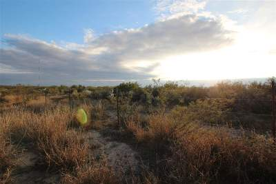 Residential Lots & Land For Sale: 0002 Chicote Rd