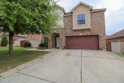 Single Family Home For Sale: 2821 Don Sergio Dr