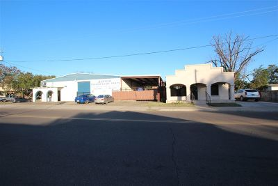 Laredo Commercial/Industrial For Sale: 1417 & 1419 Springfield Ave