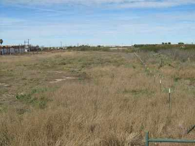 Laredo Commercial Lots & Land For Sale: U.s. Hwy 359