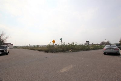 Commercial Lots & Land For Sale: 3502 S Urbahn Ave