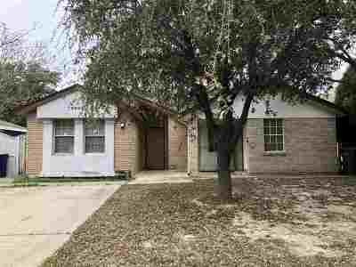 Laredo Single Family Home For Sale: 9624 White Wing Lp