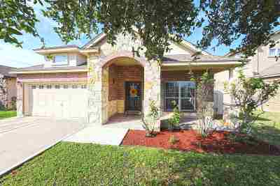 Laredo Single Family Home For Sale: 3128 Rosco