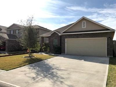 Laredo Single Family Home Option-Show: 11216 Sierra Gorda Dr