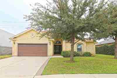 Laredo Single Family Home For Sale: 2913 Mehlhorn Lp