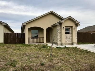 Laredo Single Family Home For Sale: 4511 Vanessita Crt