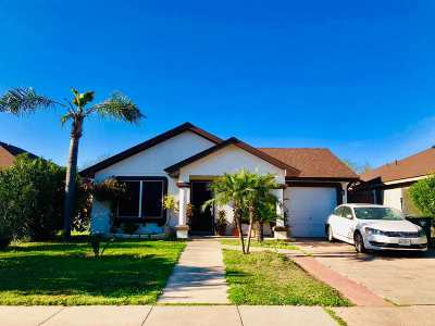 Laredo Single Family Home For Sale: 728 Antelope Ln