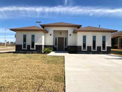 Laredo Single Family Home For Sale: 5563 Portugal Lp