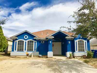 Laredo Single Family Home For Sale: 517 Mercado Ln