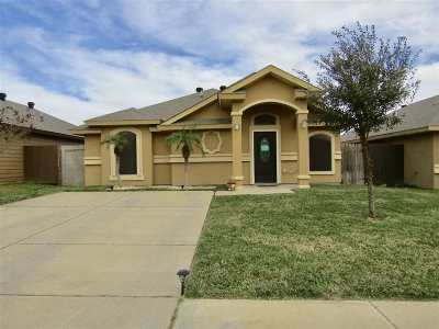 Laredo Single Family Home For Sale: 5512 Palestine Dr