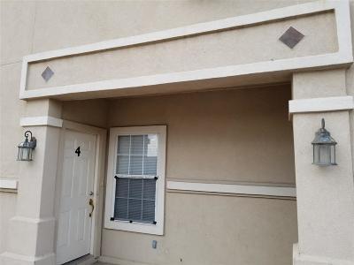 Laredo Condo/Townhouse For Sale: 201 Abigail Dominguez #4