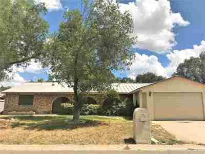 Single Family Home For Sale: 707 Timber Ln