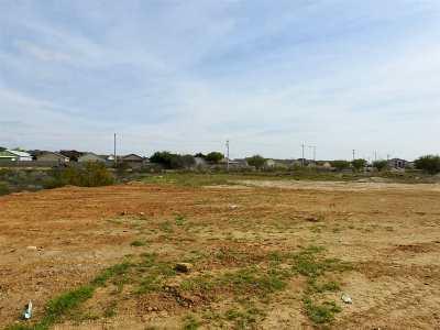 Laredo Residential Lots & Land For Sale: River Bank Dr