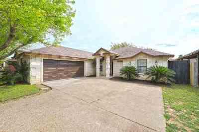 Laredo Single Family Home For Sale: 9107 Tundra Ave