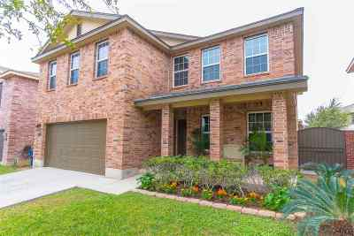 Laredo Single Family Home Option-Show: 615 Pipit Pass Dr