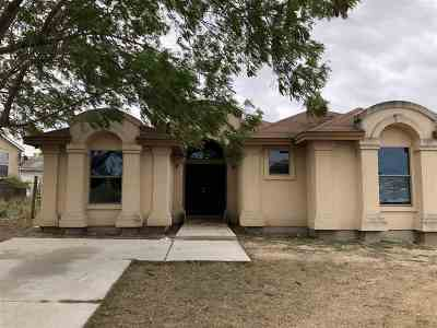 Zapata County Single Family Home For Sale: 802 Roma Ave