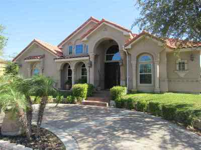 Laredo Single Family Home For Sale: 609 Puig Dr