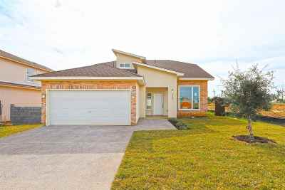 Laredo Single Family Home Active-Exclusive Agency: 6004 Maryam Dr.