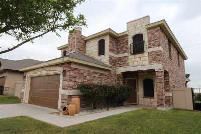 Laredo Single Family Home For Sale: 413 Windmill Palm