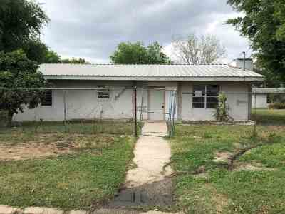 Zapata County Single Family Home For Sale: 202 Irene Dr.