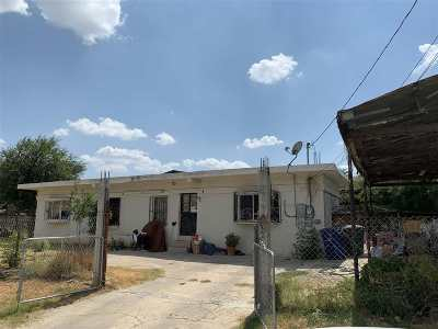 Laredo Single Family Home For Sale: 2804 Monterrey Ave